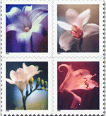 orchid postal stamps